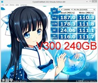 diskmarkv300