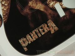 pantera5