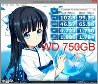 diskmarkwd750gb