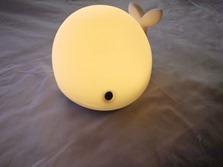 whale12