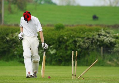 cricket-724616_1280