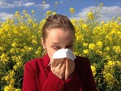 allergyart